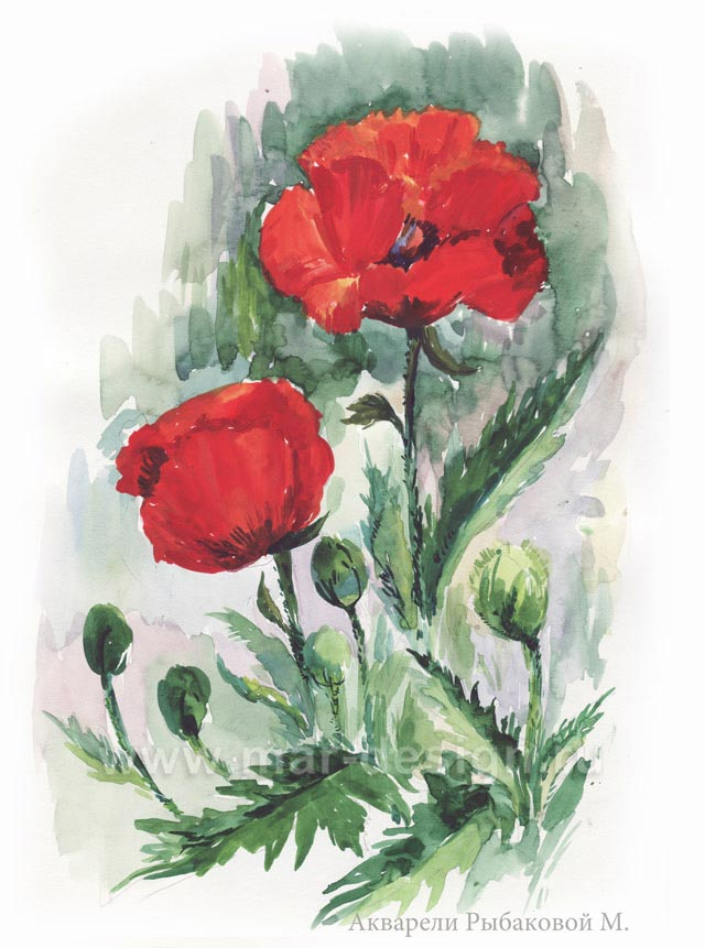 Можете заказать акварельный рисунок в студии MAR-design