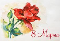 Заказ открыток. Роза акварелью.