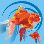 Дизайн листовки для рыбной лавки. Рисованная графика для листовки