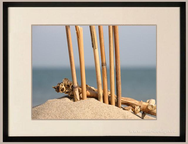 Фотография в интерьере, частый тростник на море