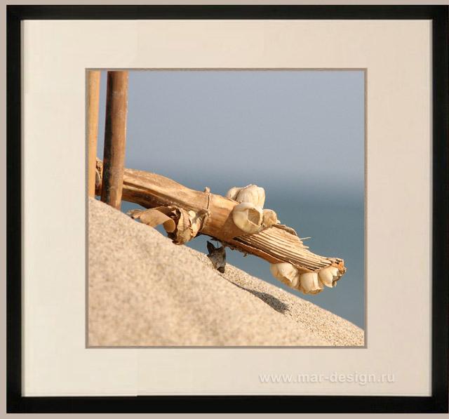 Фотография в интерьере, тростник на песчаном склоне